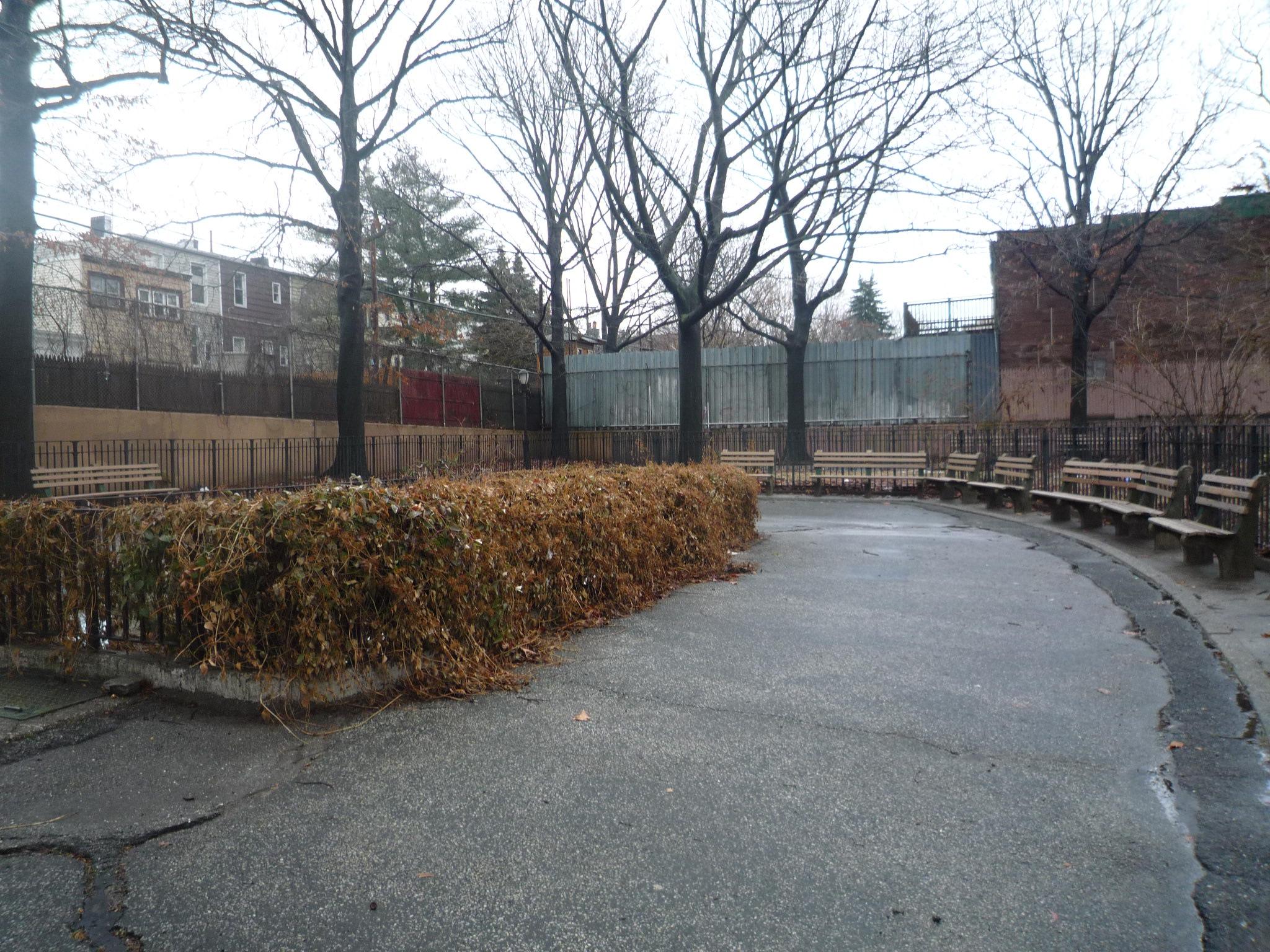 park before.jpg