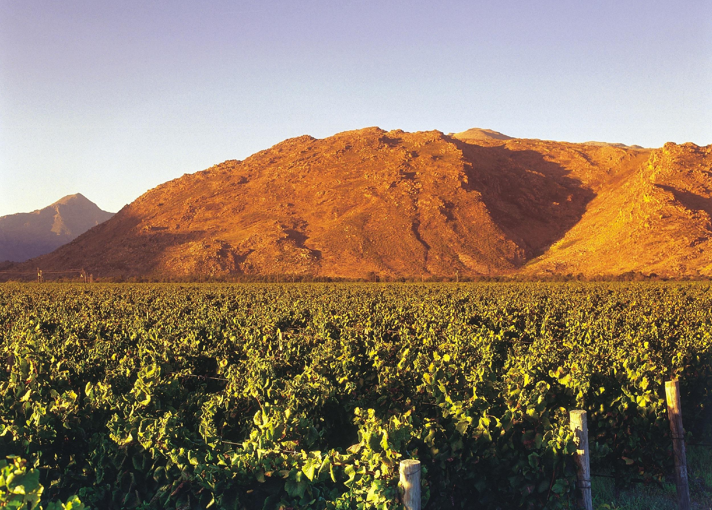 merwida mountain.jpg