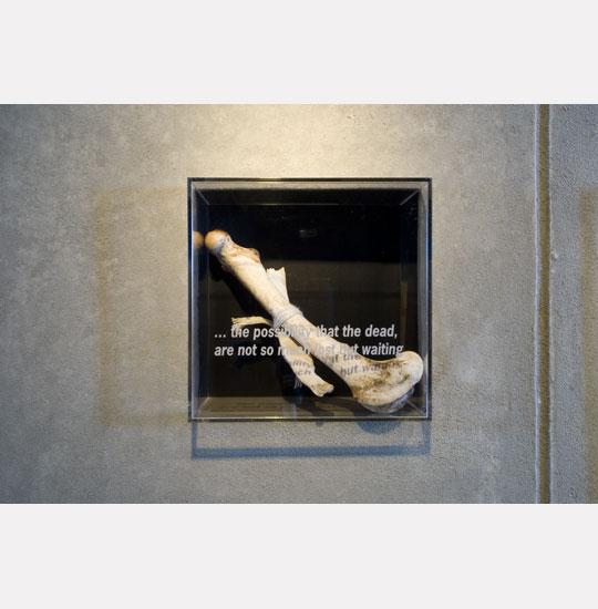 02-BoneLinen.jpg