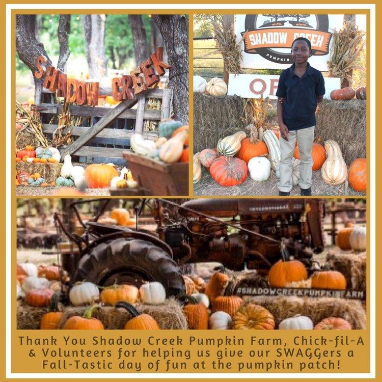 Pumpkin+Farm.jpg