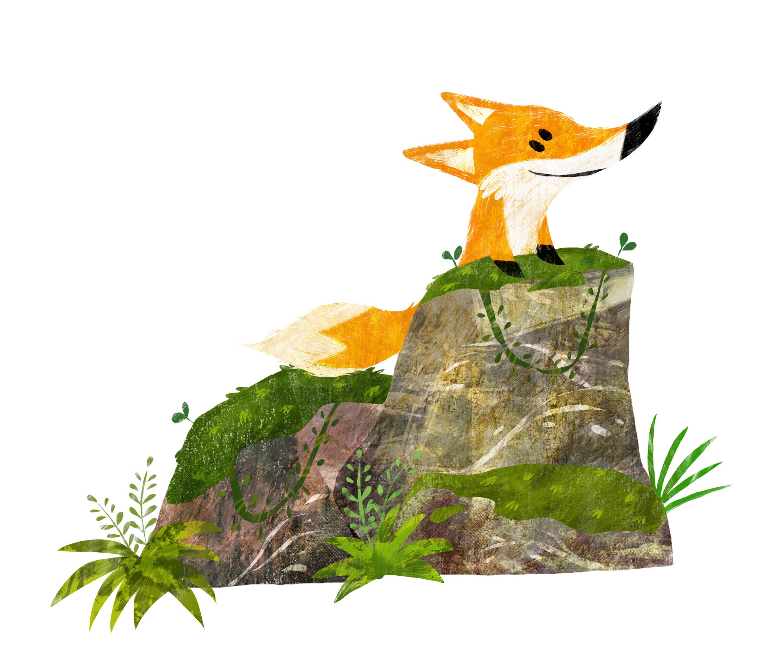 Fox..jpg