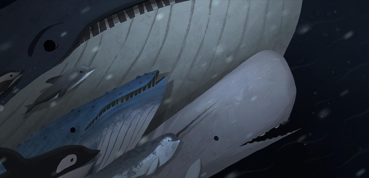 Whale Family_v03.jpg