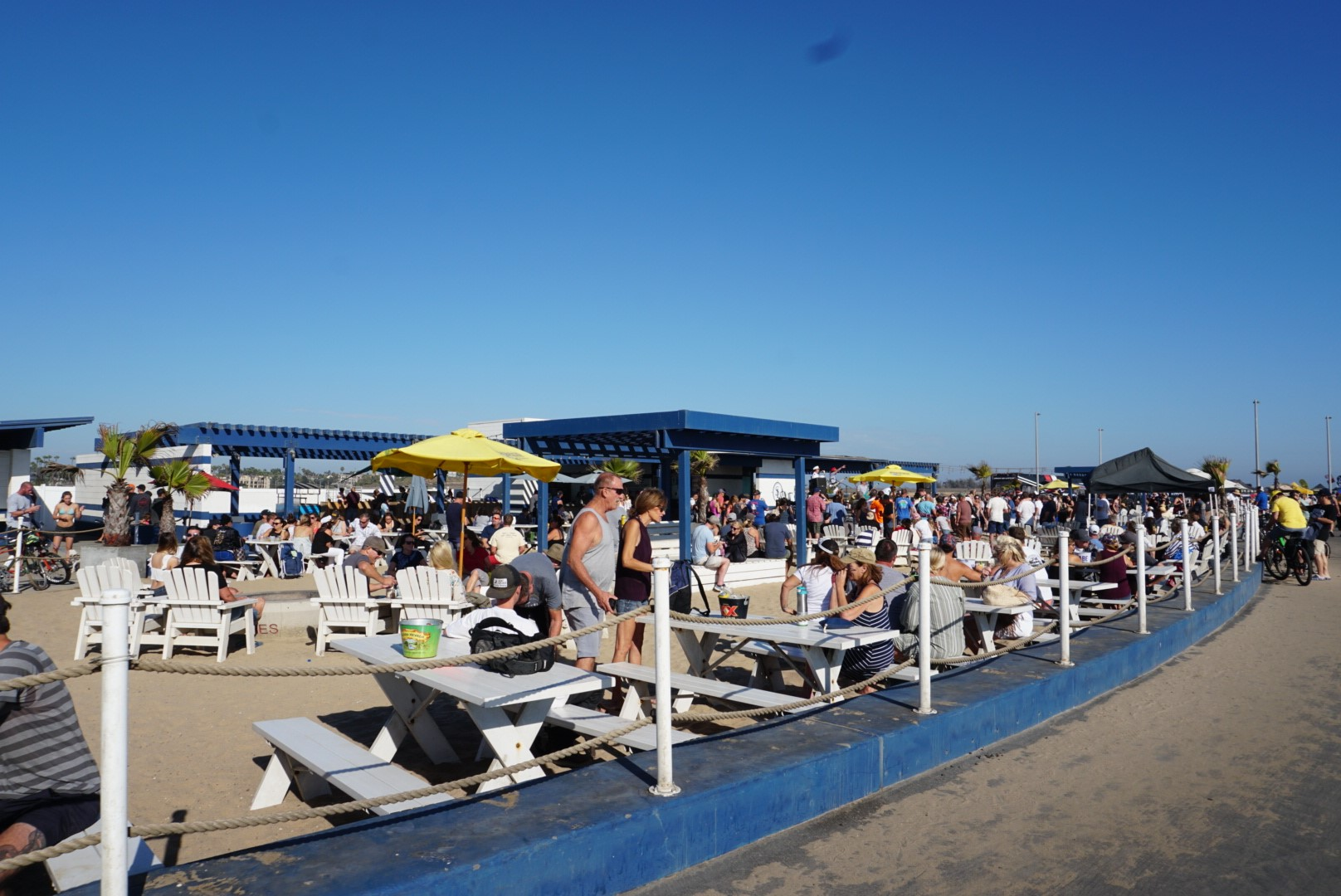 Sealegs at the Beach