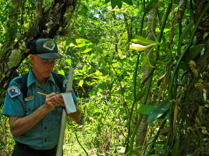 Fakahatchee Strand Preserve State Park Biologist Mike Own has been protecting the park for over 24 years.  Photo credit: FloridaHikes.com