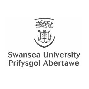 swansea-university.jpg