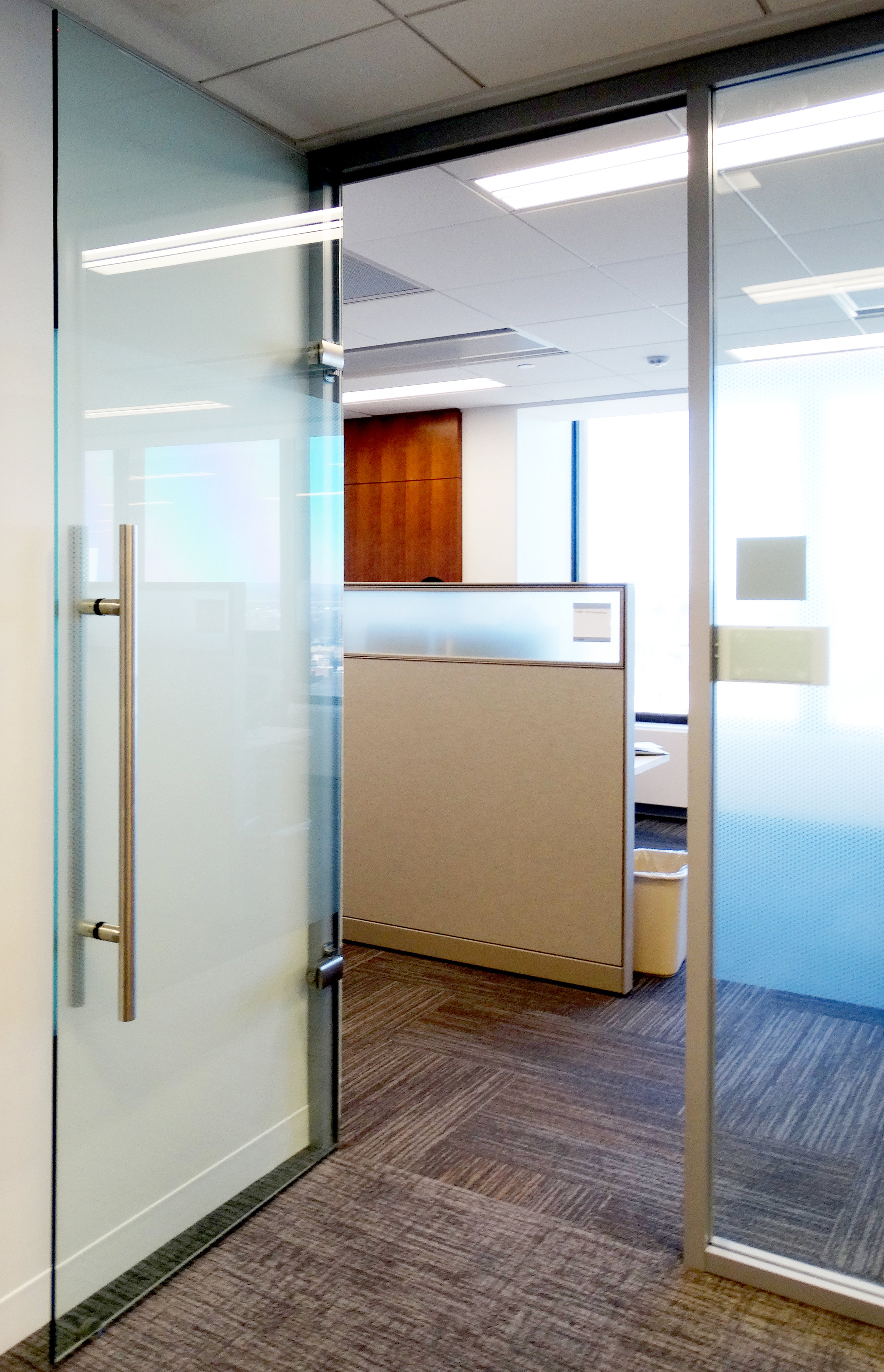 Litespace Aluminum Framed Wall Frameless Glass Door - Spaceworks AI.jpg