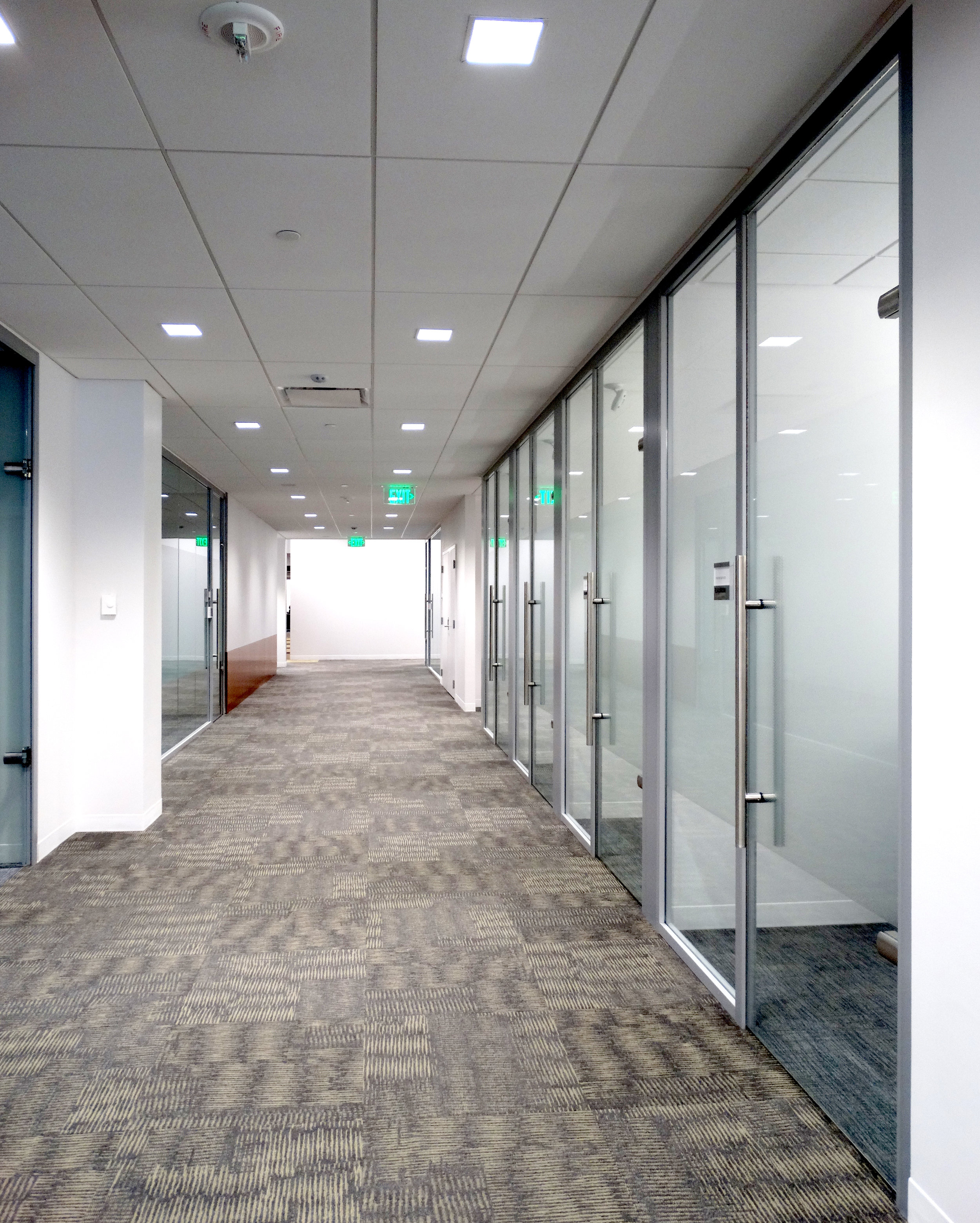 Litespace Frameless Glass Swing Door Offices - Spaceworks AI.jpg