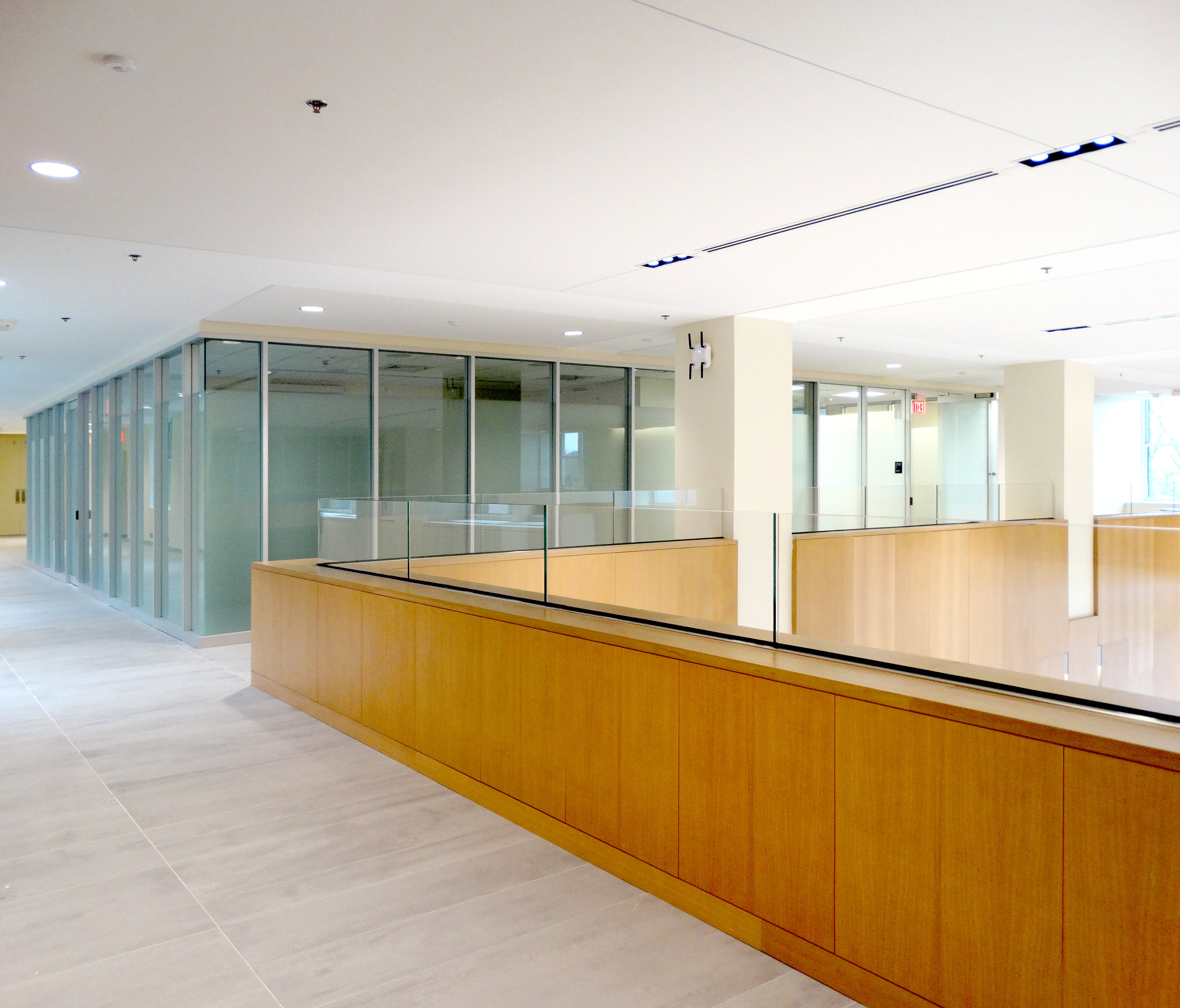Encase Aluminum Framed Glass Mullion Wall - Spaceworks AI.jpg