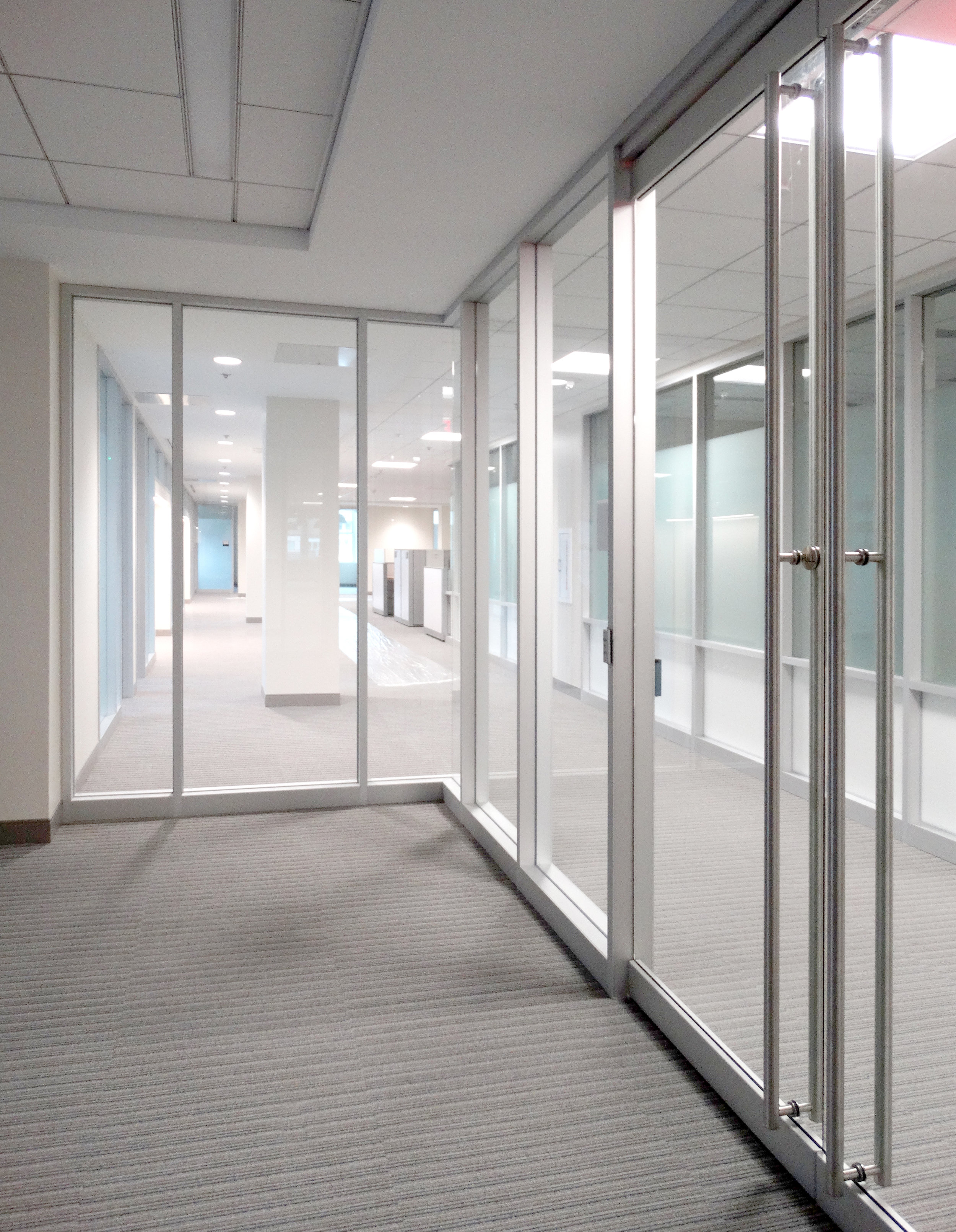 Encase Aluminum Framed Vertical Mullion Frameless Swing Doors - Spaceworks AI.jpg