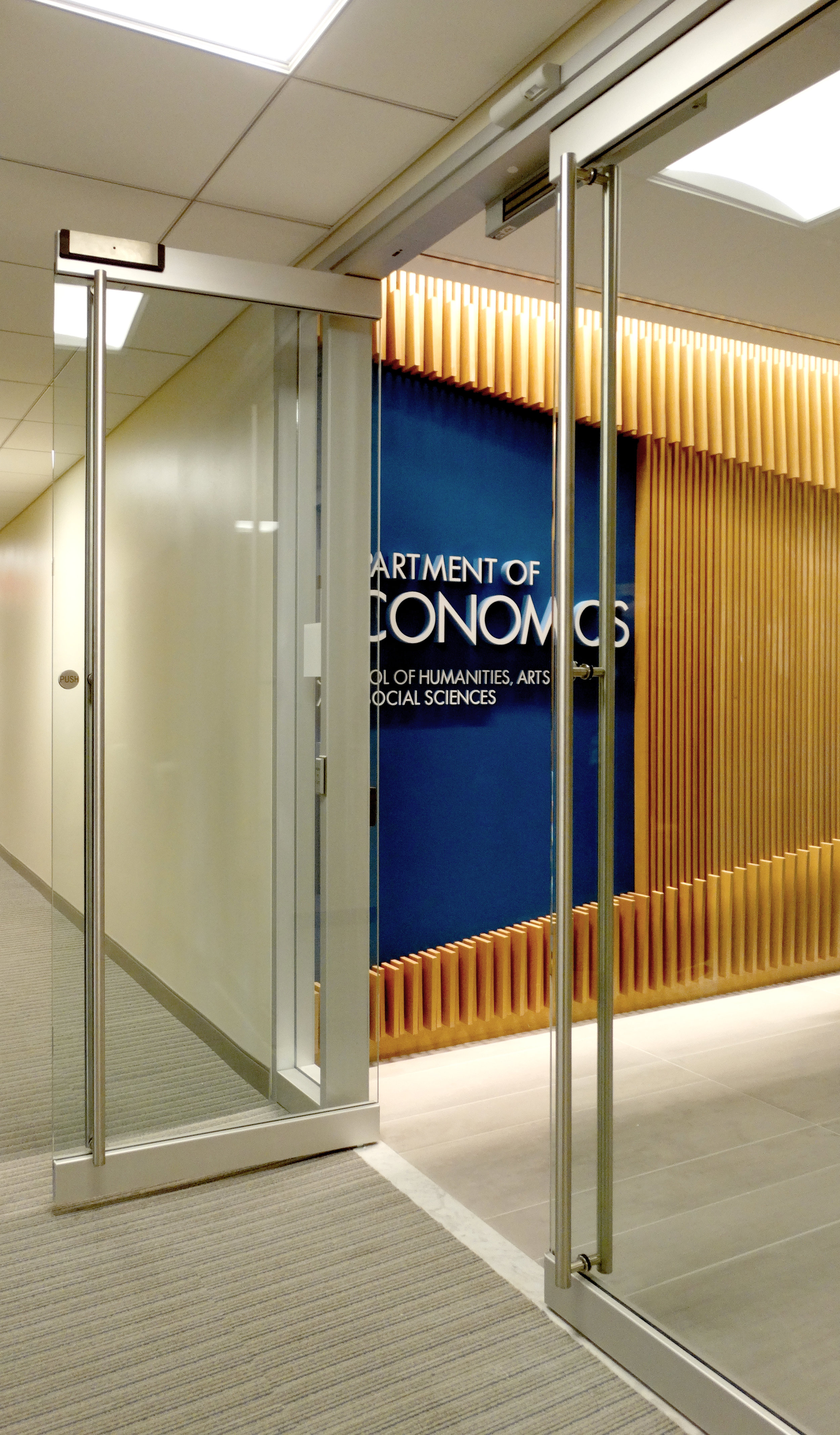 Encase Frameless Glass Rail Door - Spaceworks AI.jpg