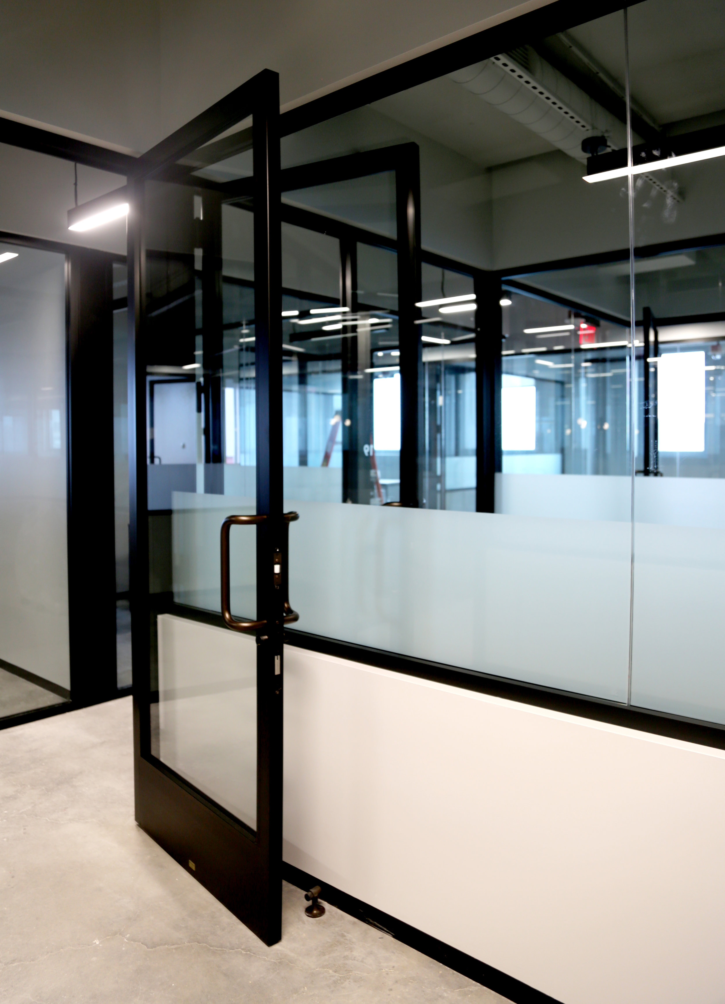 Litespace Black Narrow Stile Aluminum Door - Spaceworks AI.jpg