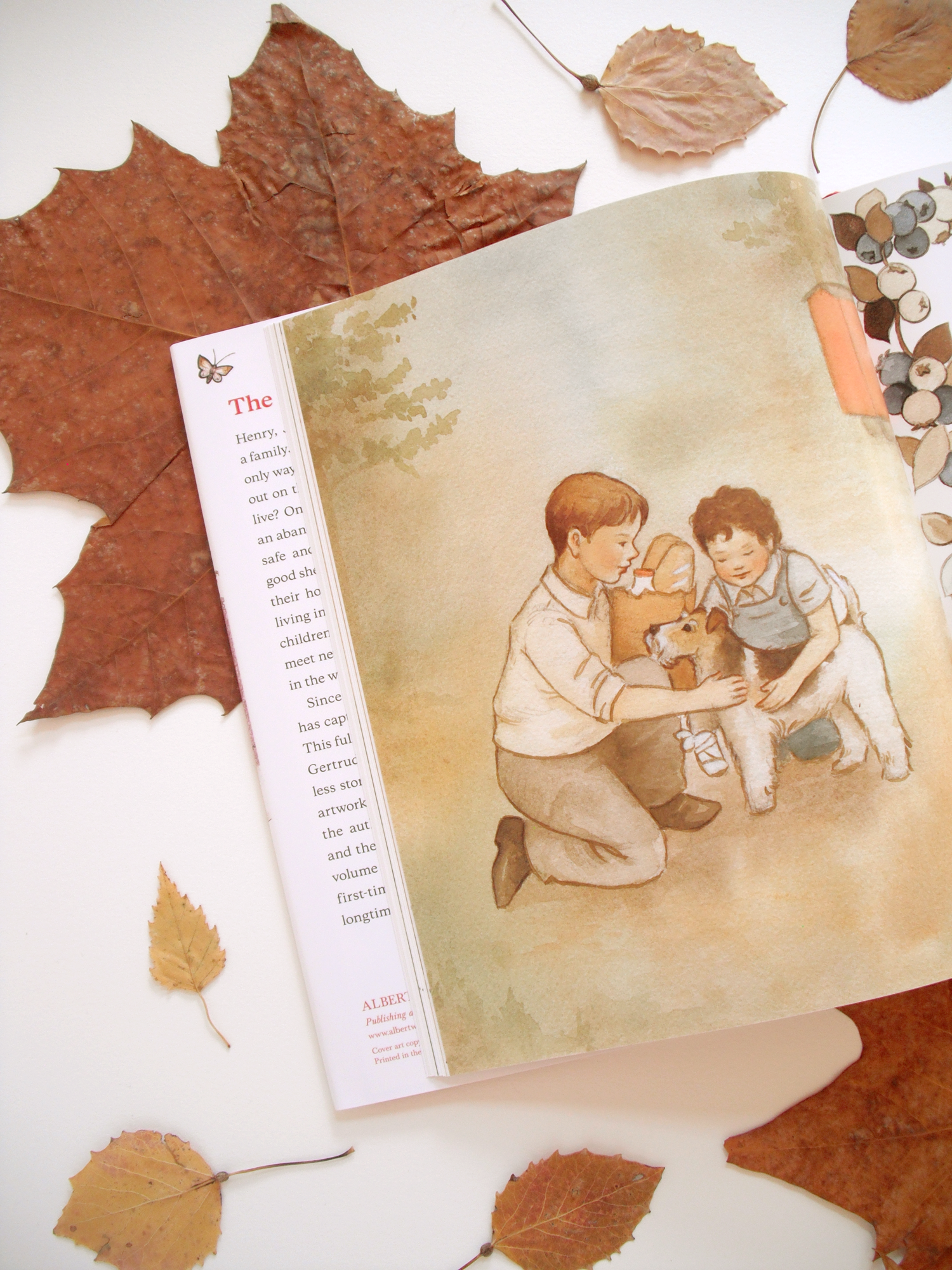 the-boxcar-children-book-release2.png