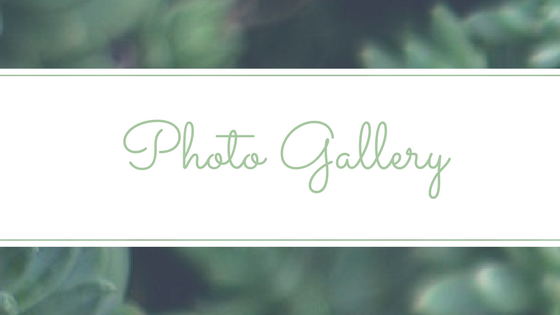 Photo Gallery.png