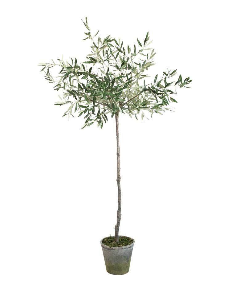 Faux_Potted_Olive_Tree_2_276f0167-eda1-4973-960f-92dd6174f7ff_960x960-2.jpg