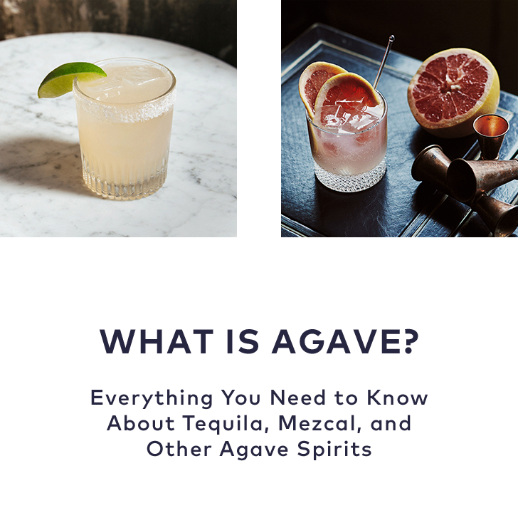 Agave1.png