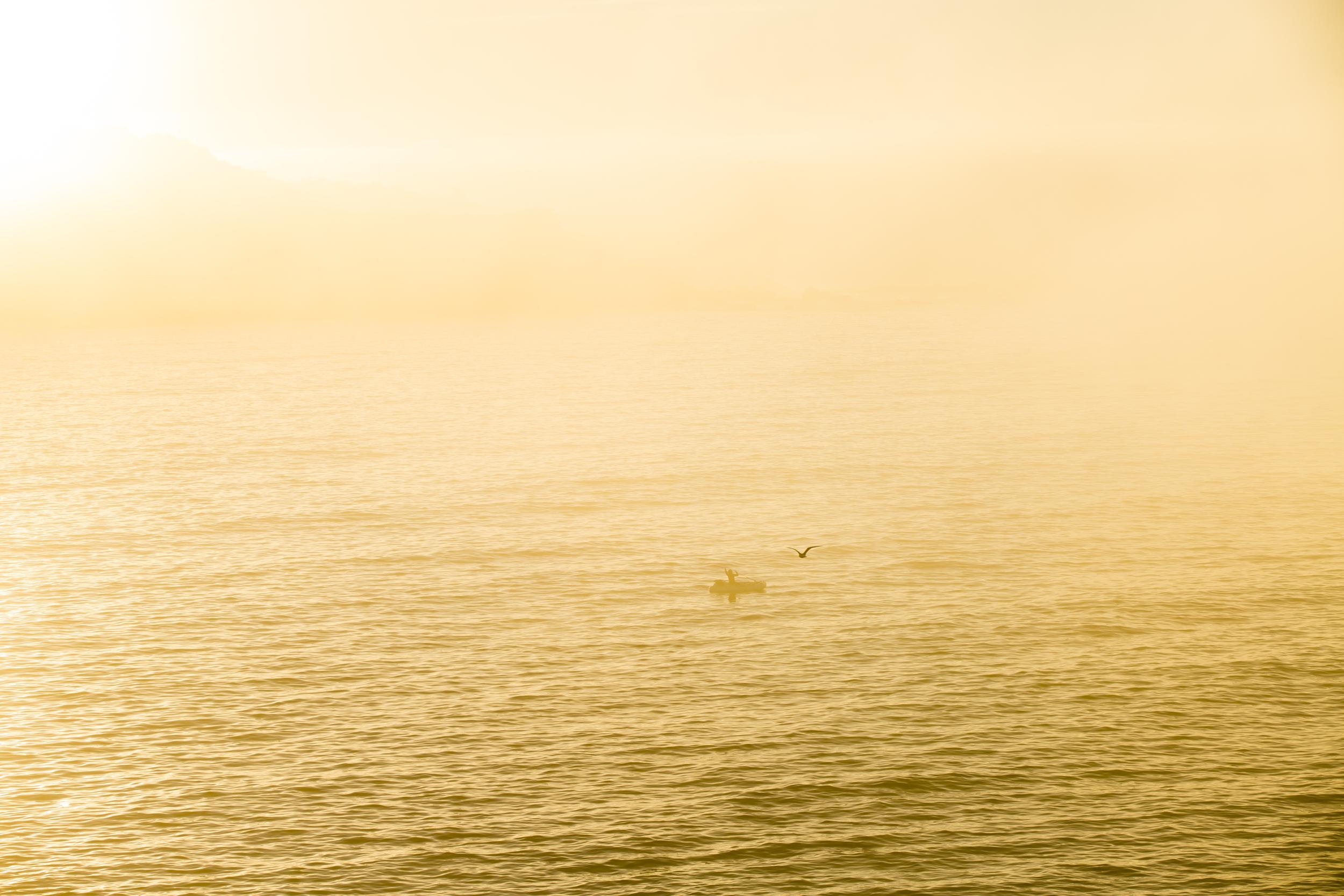 Timber Cove Fisherman