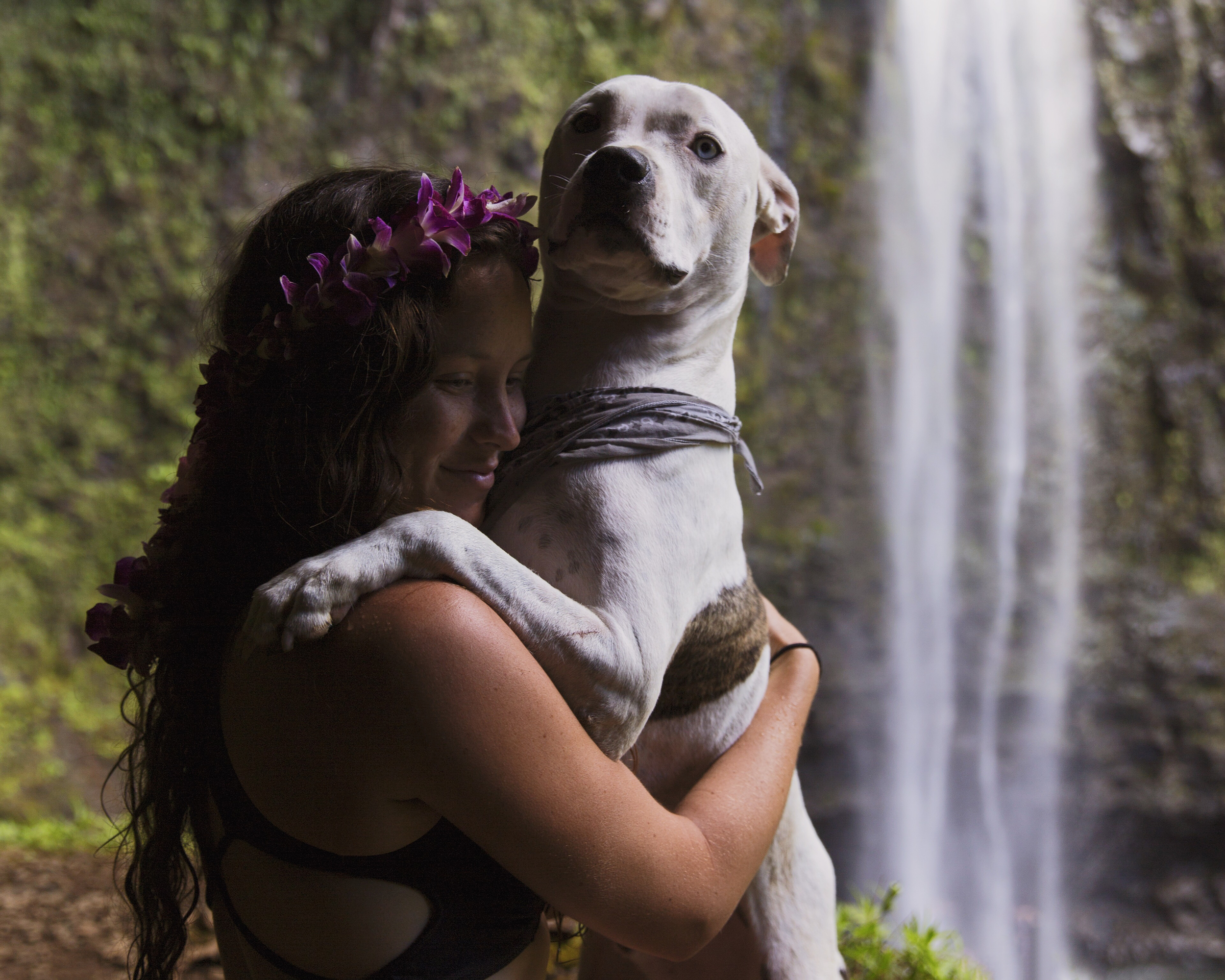 Pup's and Waterfall