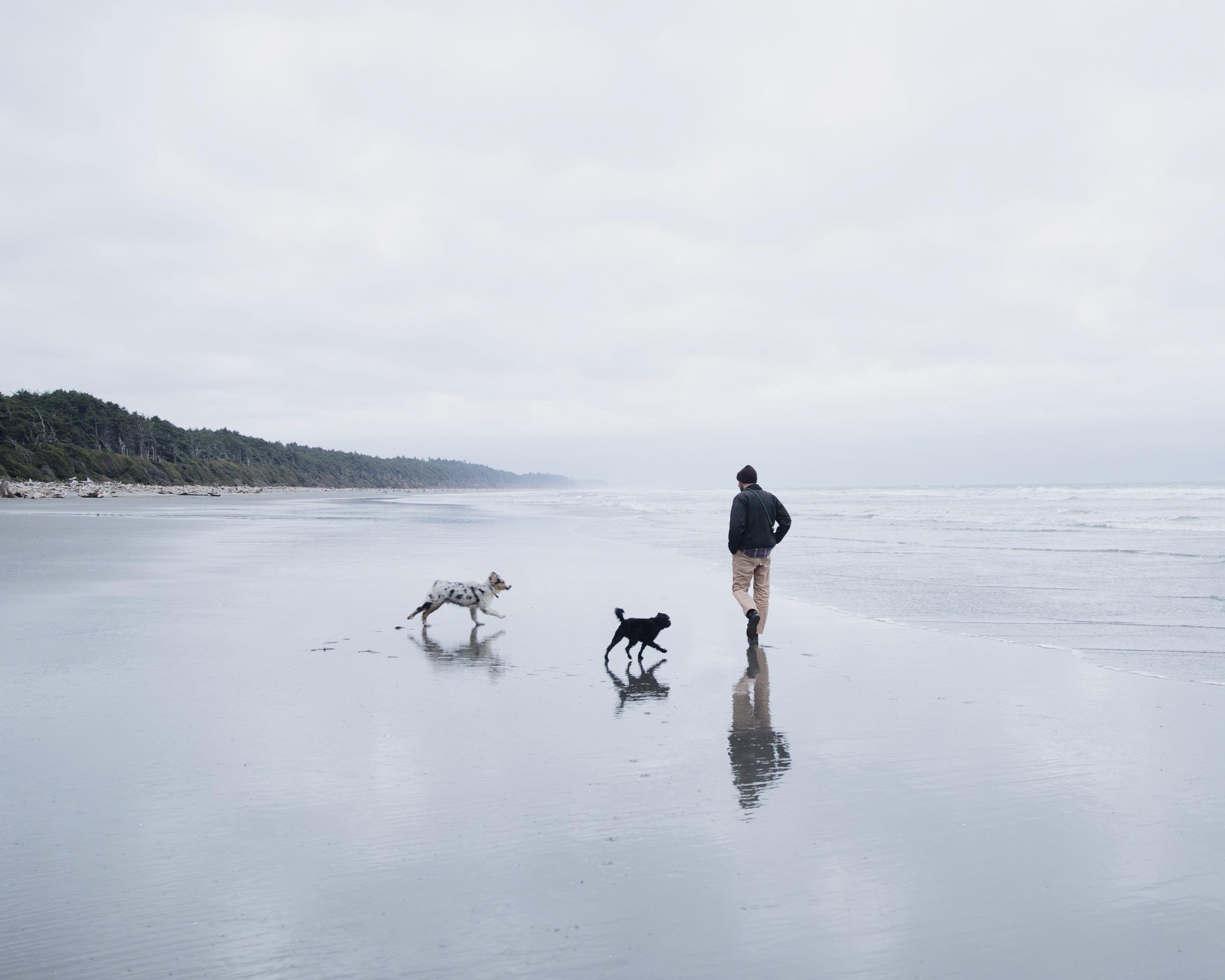 Presto, Dusty, and Tony at Kalaloch Beach