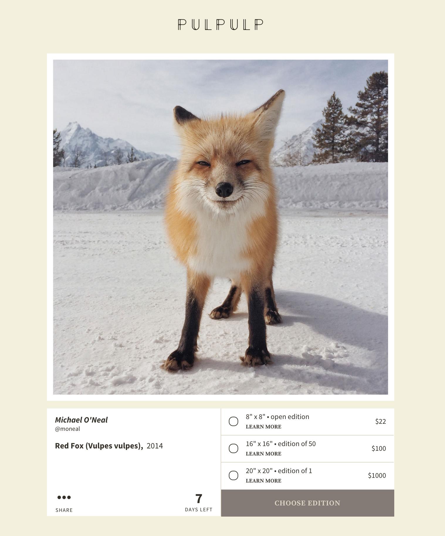 foxpulpulp.jpg