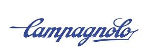 campylogo (1).jpg
