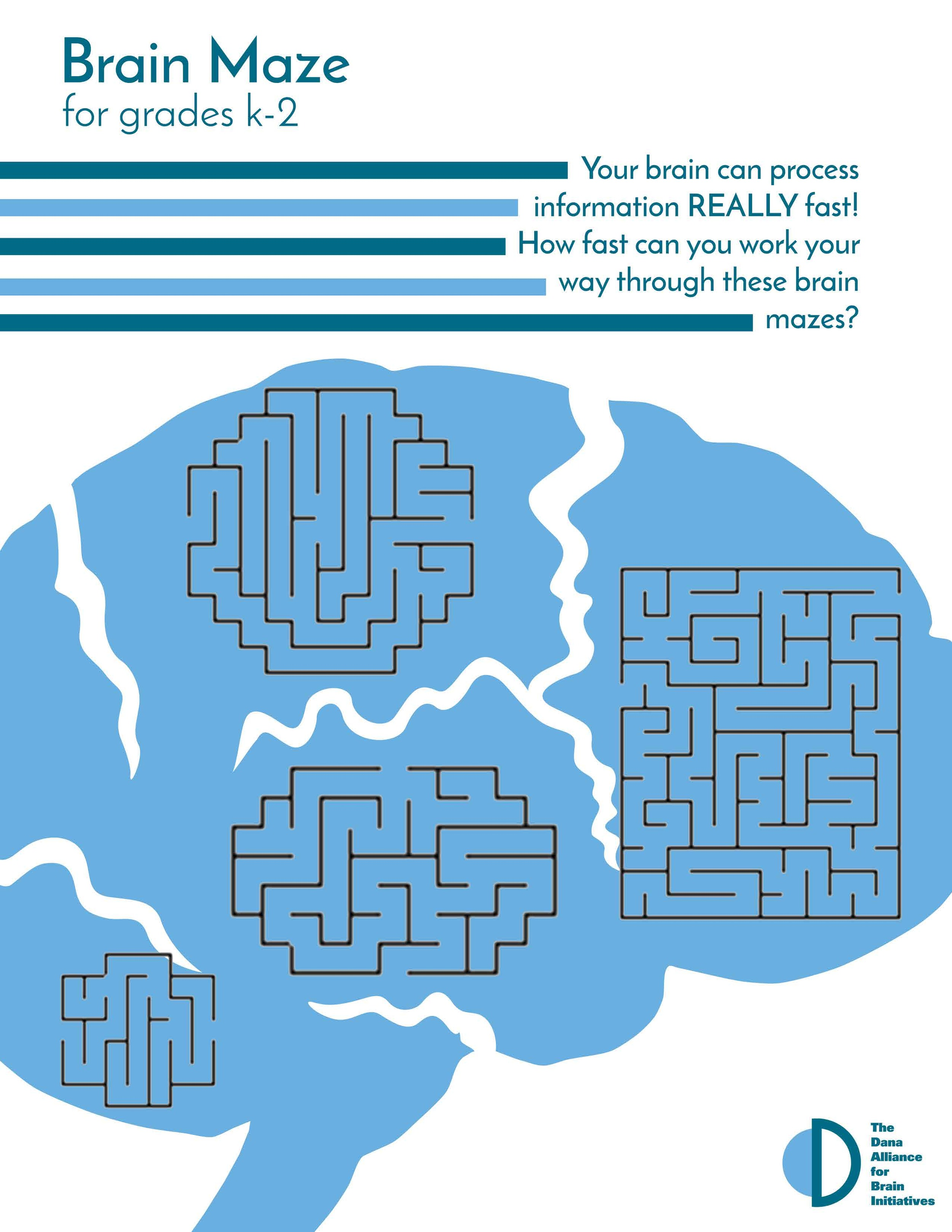 k-2 Brain Maze Color.jpg