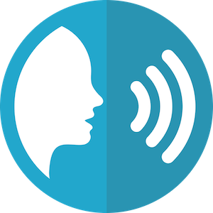 speech-icon-2797263 300h.png