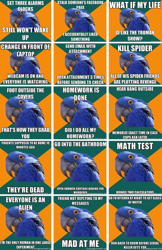 paranoid-parrot.jpg