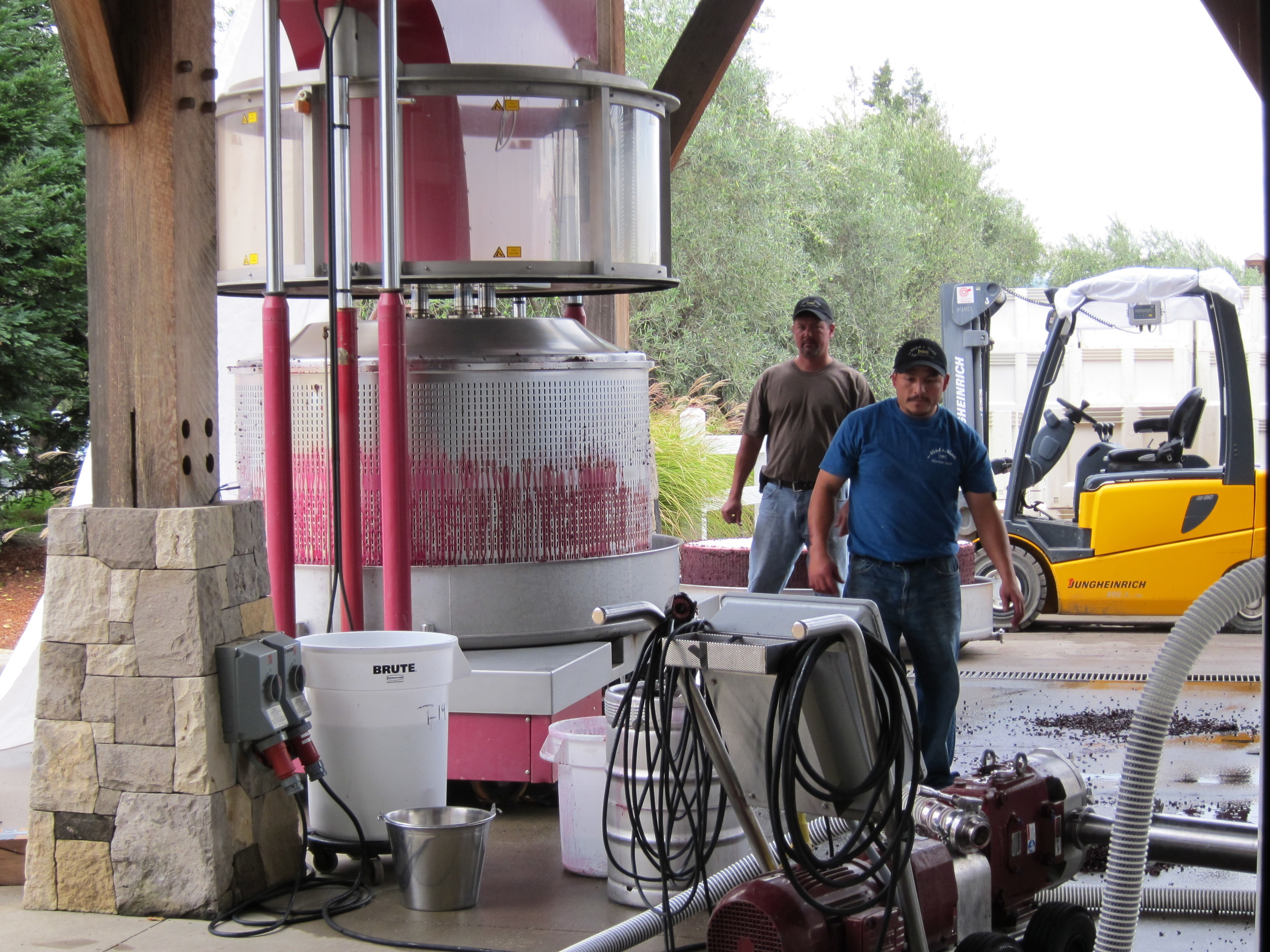 Crushing grapes at Nickel & Nickel