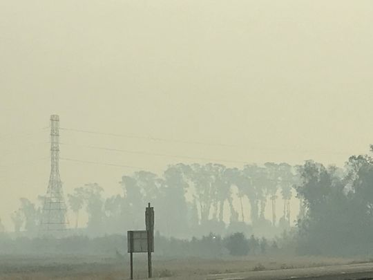 Photo: Elizabeth Weise. The area just south of Napa and Sonoma.
