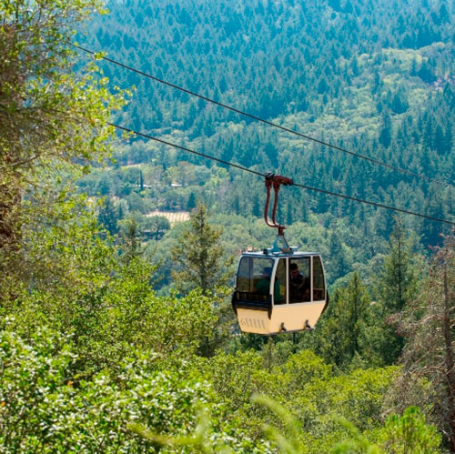 Sterling Tram is 2 for 1 with pass! Get the pass to get the free deal.