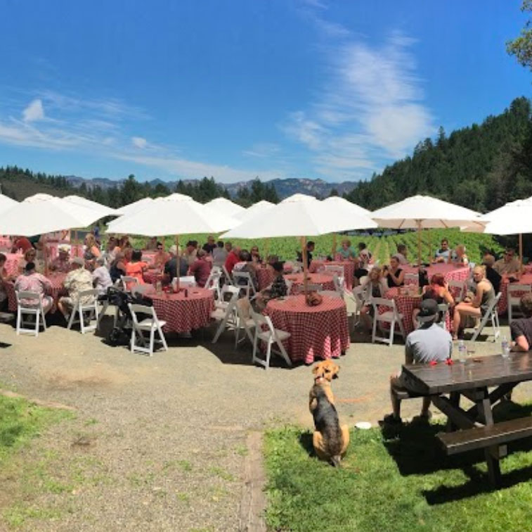 Keenan Winery Napa Valley picnic spot