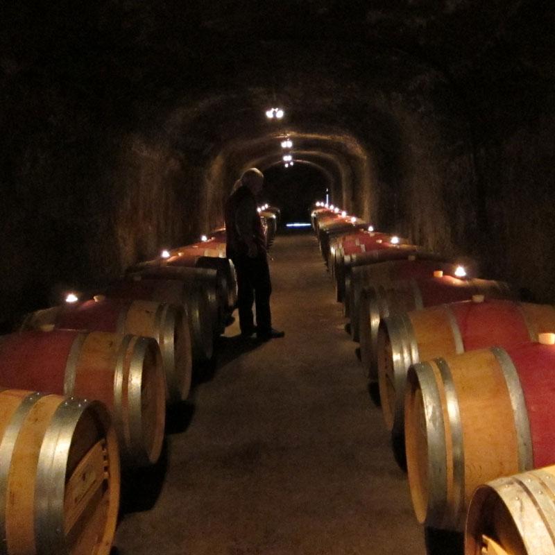 Del Dotto Wine Caves Napa Silverado Trail