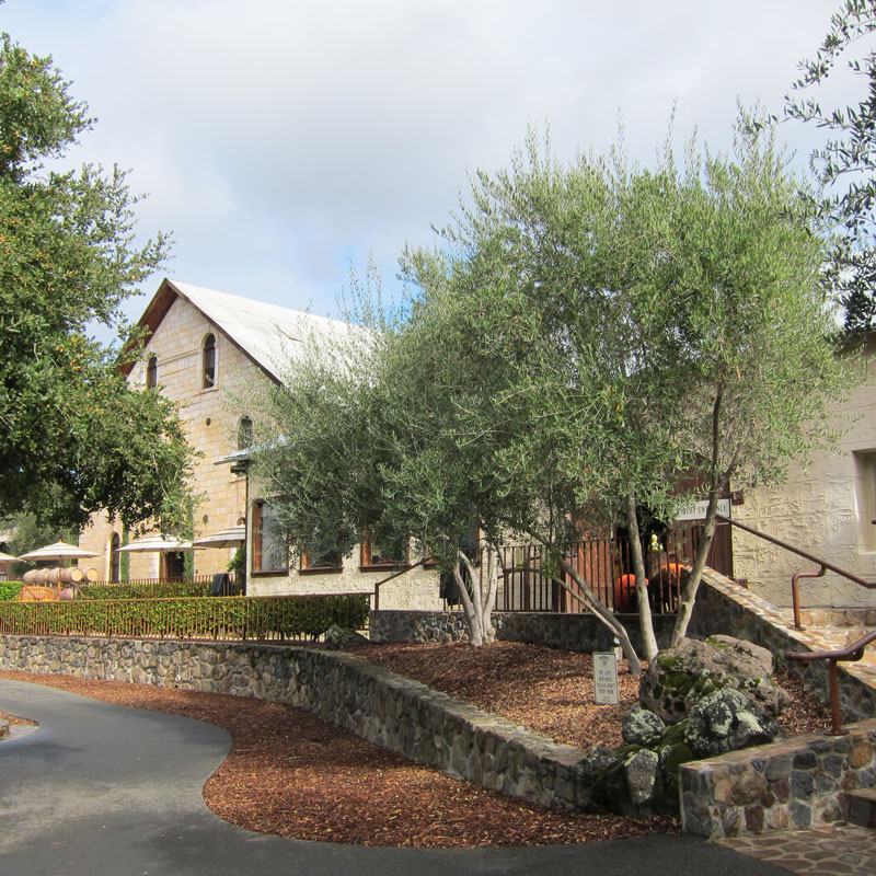 Regusci Winery Napa Valley