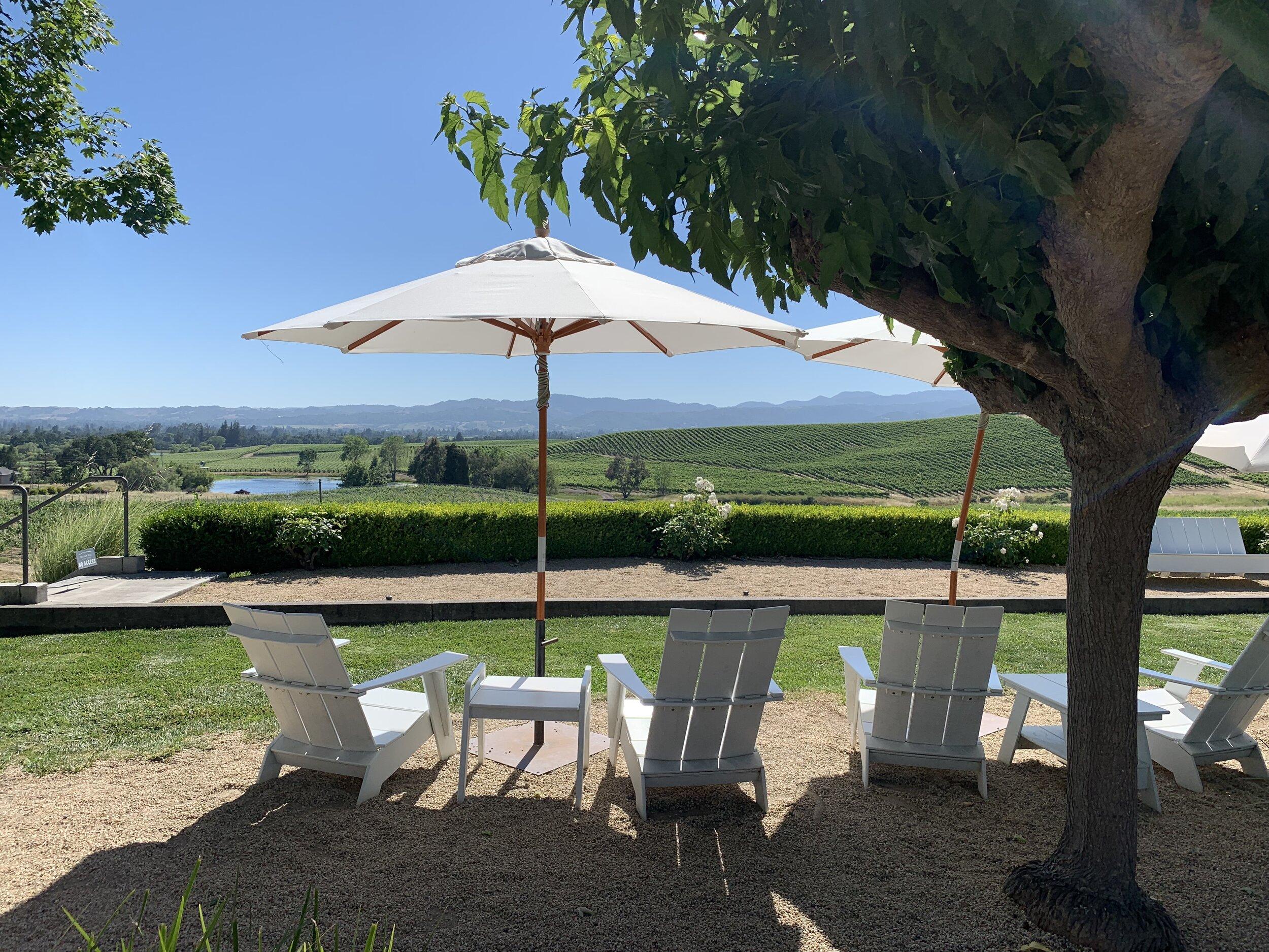 William Hill Estate Winery in Napa Valley