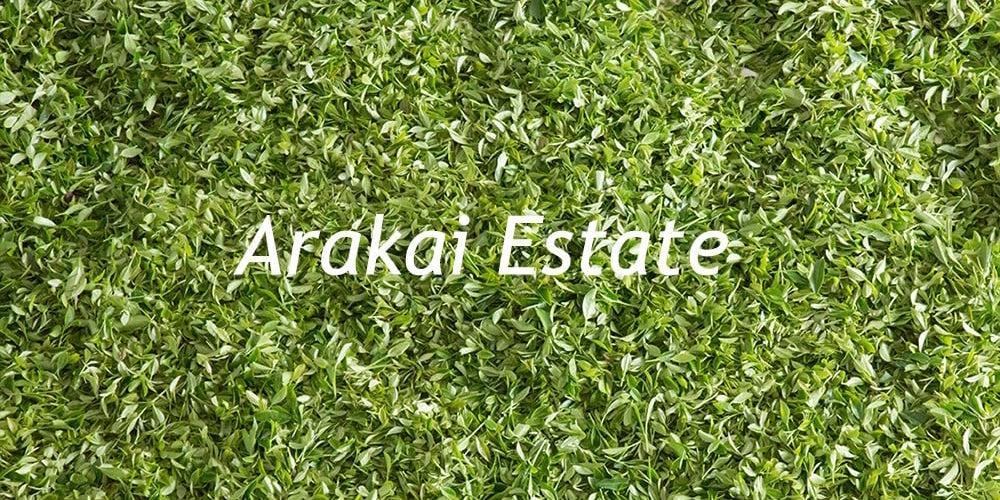 _arakai-image15 copy.jpg
