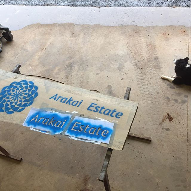 Finally getting around to making some signs for the farm! It's hard to go wrong with a nice #Bosch router and some 50mm slabs of White Beech. A most enjoyable project on a rainy day :) #arakaiestate #woodworking