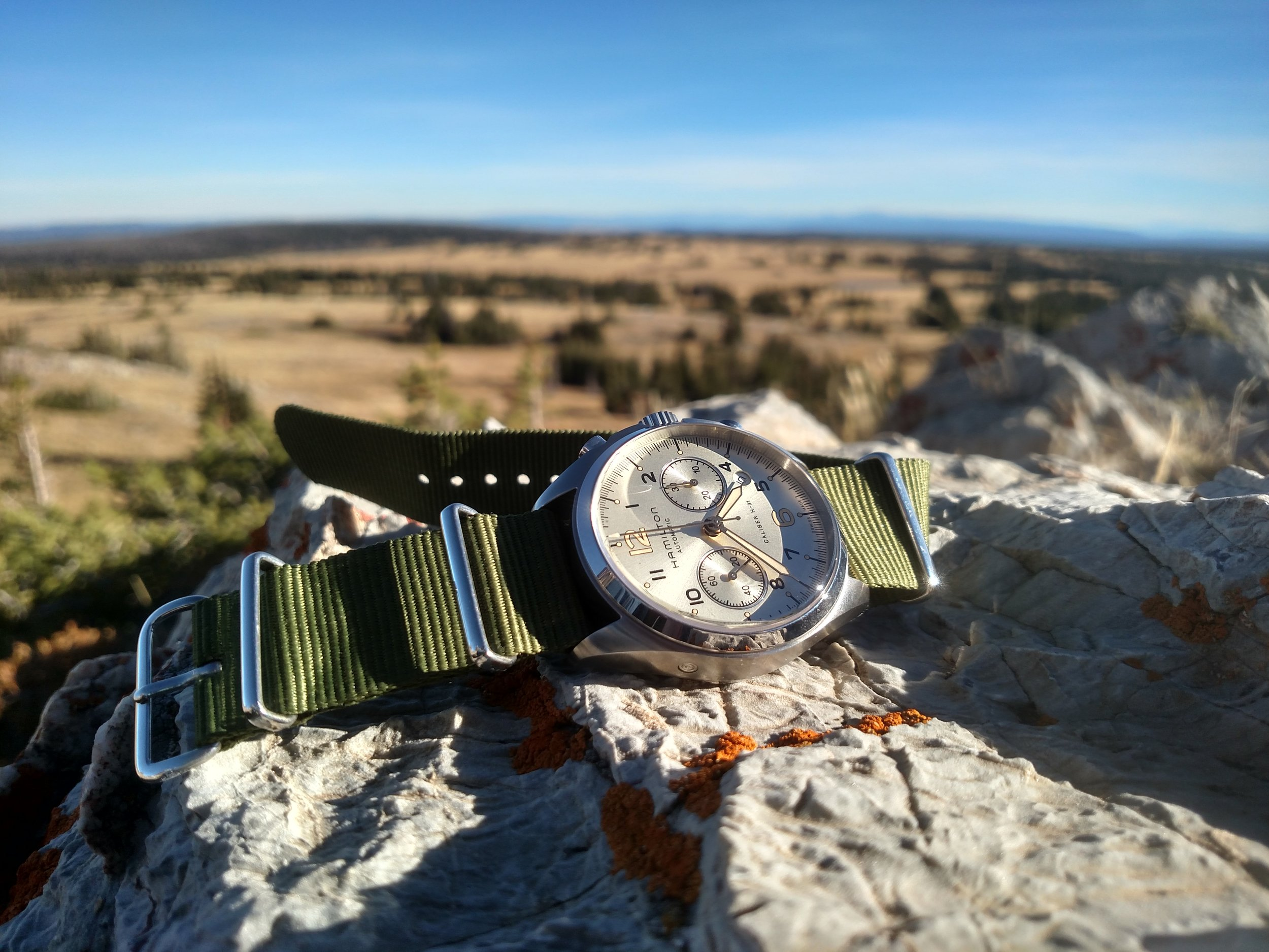 Hamilton Khaki Pilot Pioneer looking out over Medicine Bow National Forest  Near Centennial, Wyoming