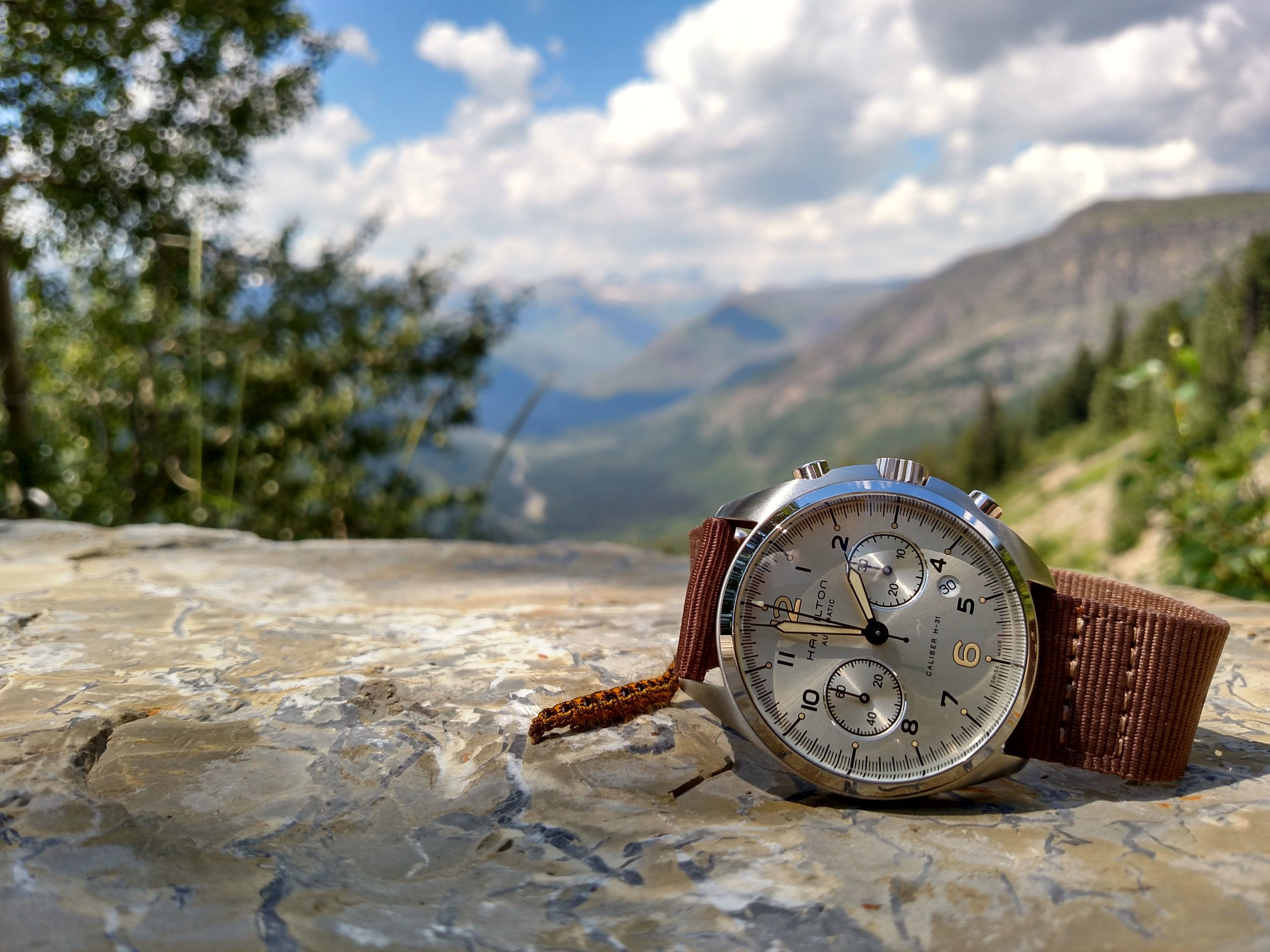 Hamilton Khaki Pilot Pioneer on Going-To-The-Sun Road  Glacier National Park, Montana