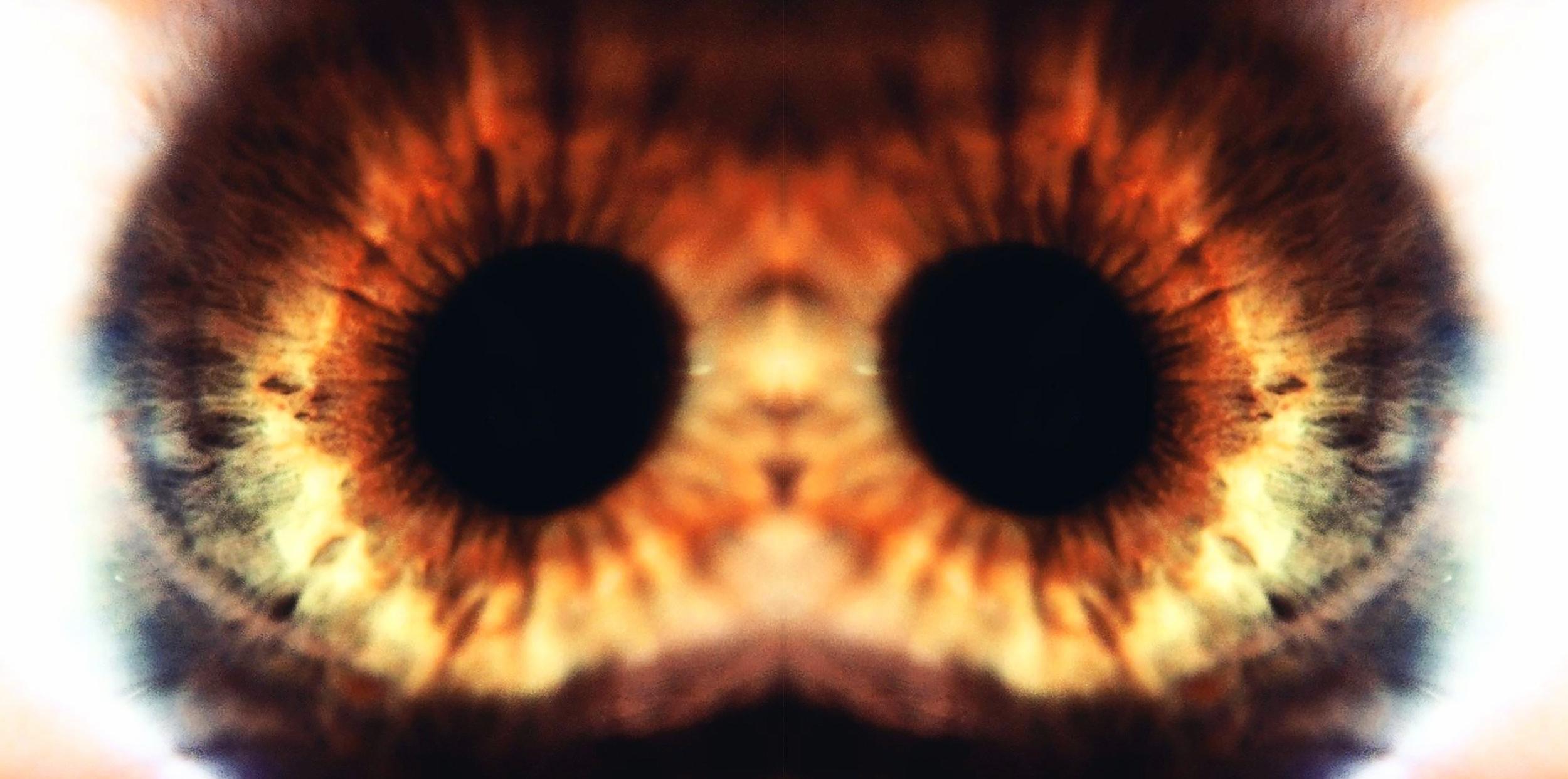 Dual Eye.jpg