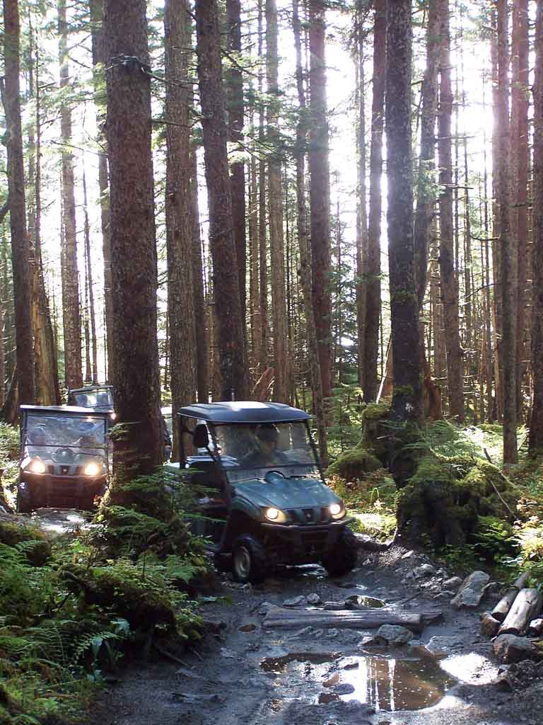 Side By Side Ride in The Tongass National Forest
