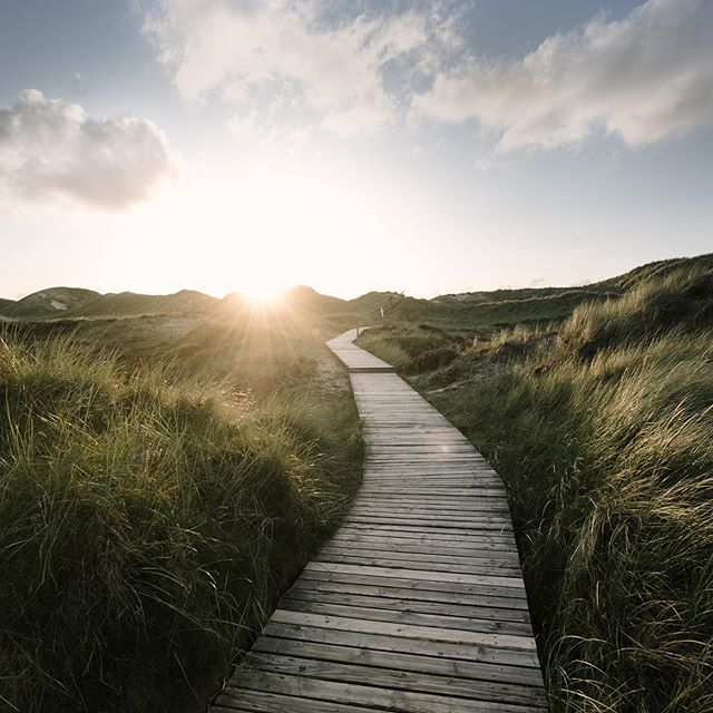 #amrum #boardwalk #natur #beautyinnature  #sunset #wattenmeer #nordsee