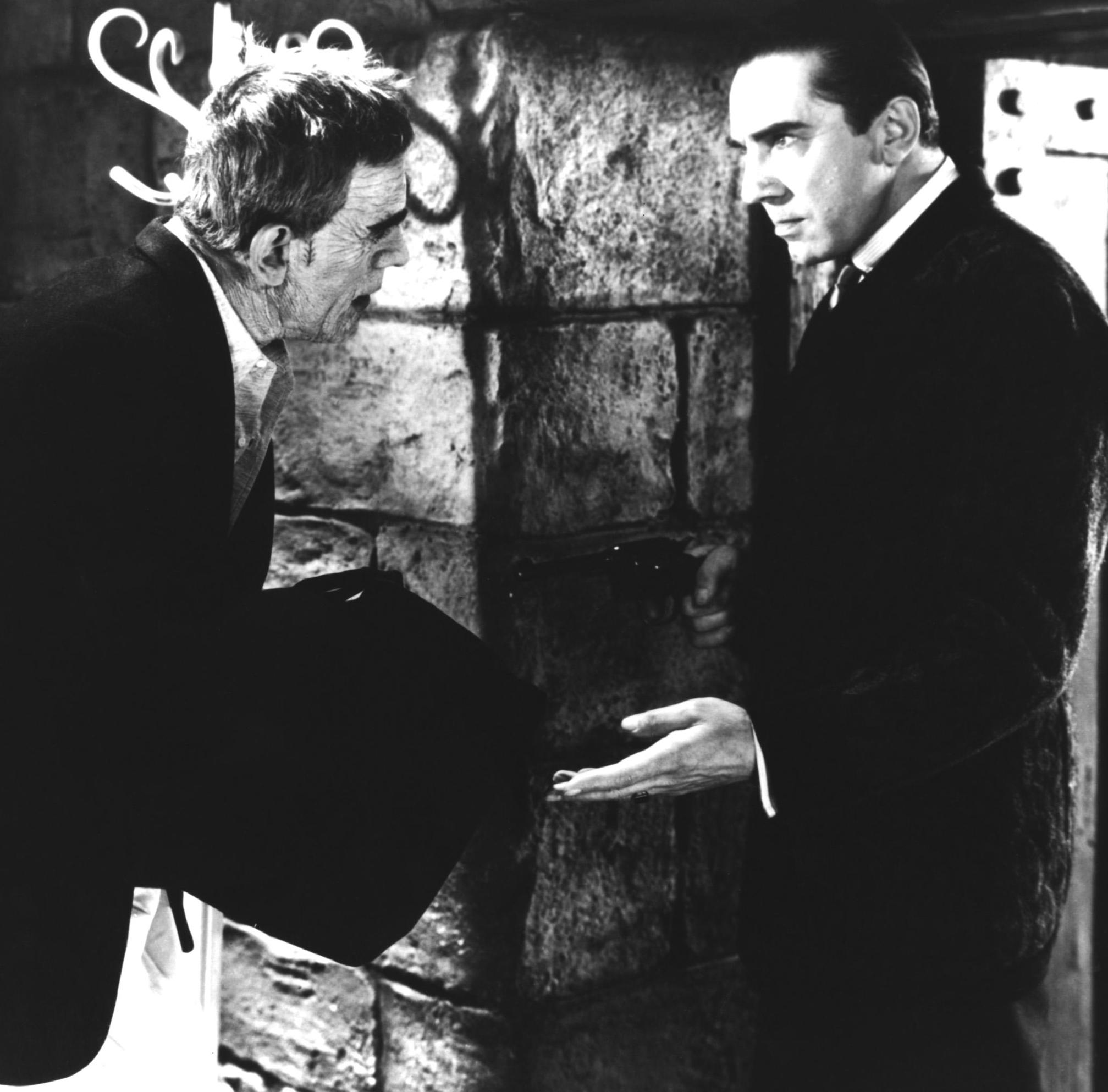 Boris Karloff and Bela Lugosi,  The Raven , 1935