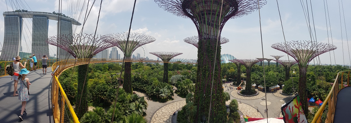 The Skywalk at Gardens by The Bay