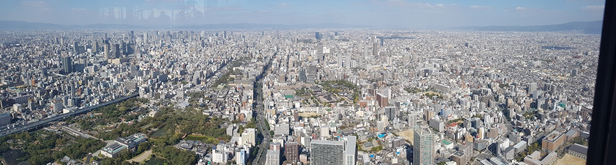 The zoo and park is the green space to the left. Shitenno-ji Temple is in the middle of the photo.