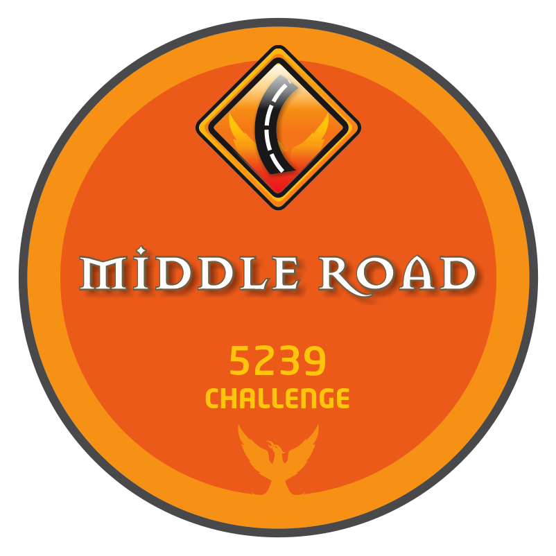 NP-CHALLENGE_MIDDLE_ROAD-V2-5239.png