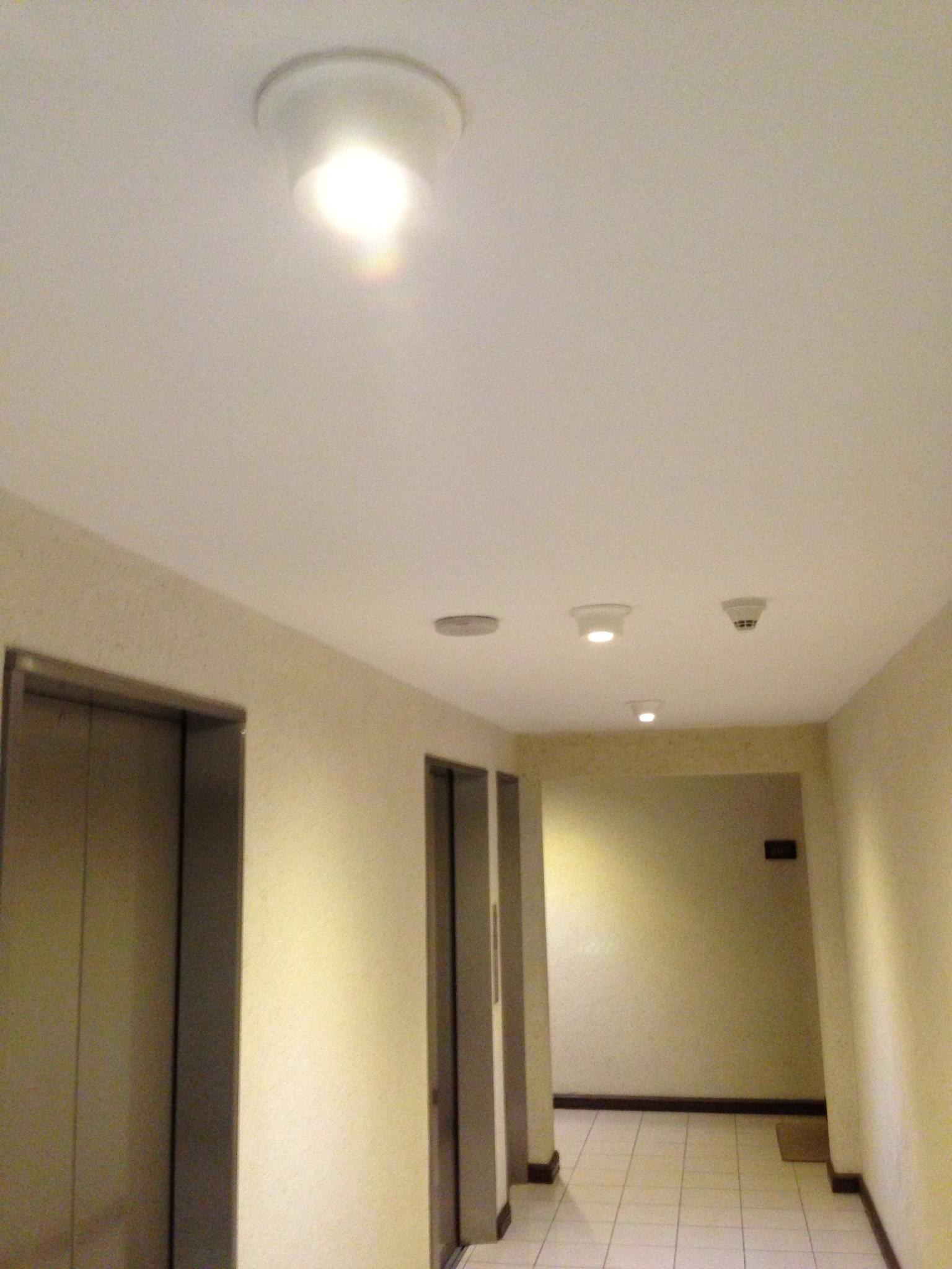 Evolux 4w Evospot LED Dichroic Bulb - Piso 2 Edificio Gran Parque (Providencia, Santiago, Chile).JPG
