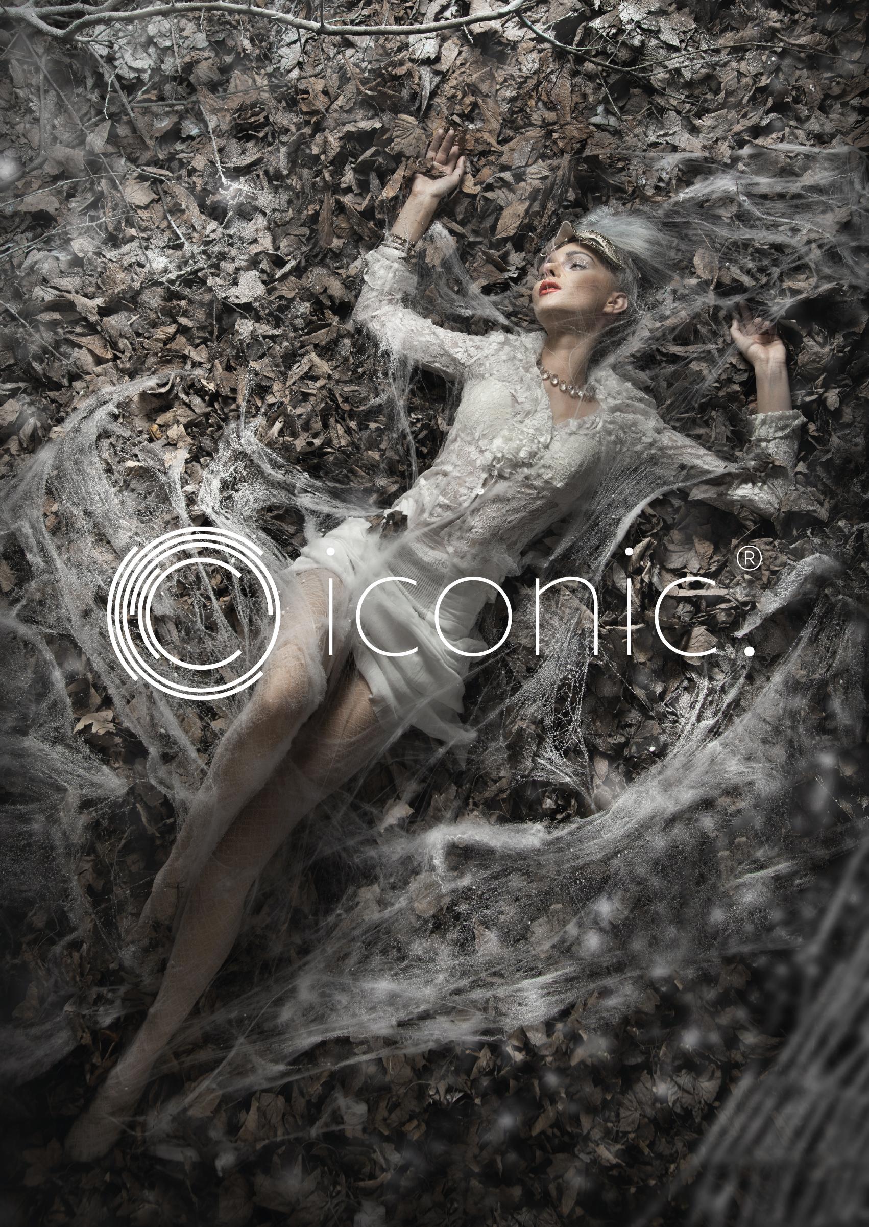 iconic_launchA1-03.png