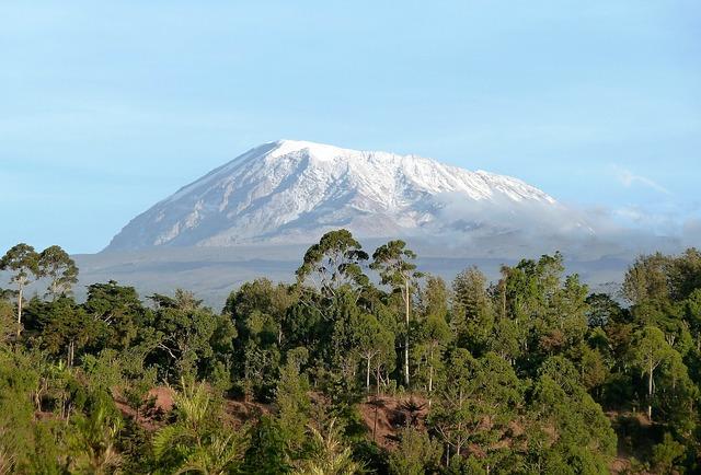 Kilimanjaro Panorama.jpg