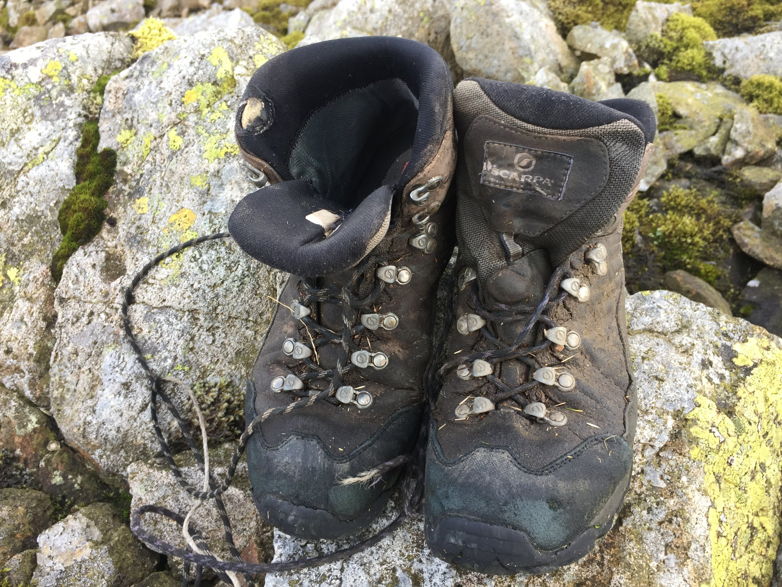 James Forrest climbed 446 mountains in his wife's old hiking boots