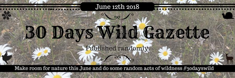 30 days wild flowers